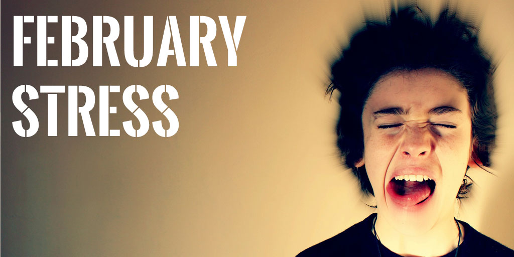 February Stress : The Stress of Starting an Online Business