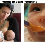 Weaning – When to Start Solids for Baby