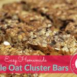 Oat Cluster Bars