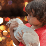 Bringing a Dog Into a Home with Children:  How To Do  It Successfully