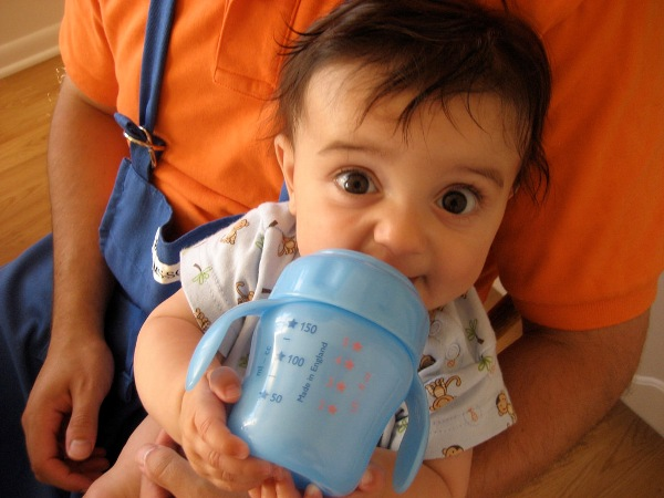 baby food ideas for daycare