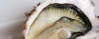 Les perles parisiennes où manger des huîtres