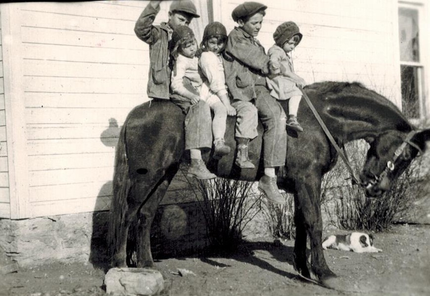 Keller kids on horse