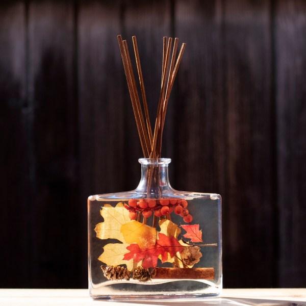 diffuseur huiles essentielles automne