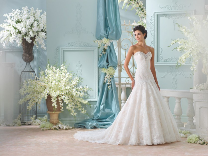Bridal inspiration…gorgeous new arrivals at The Bridal Showroom