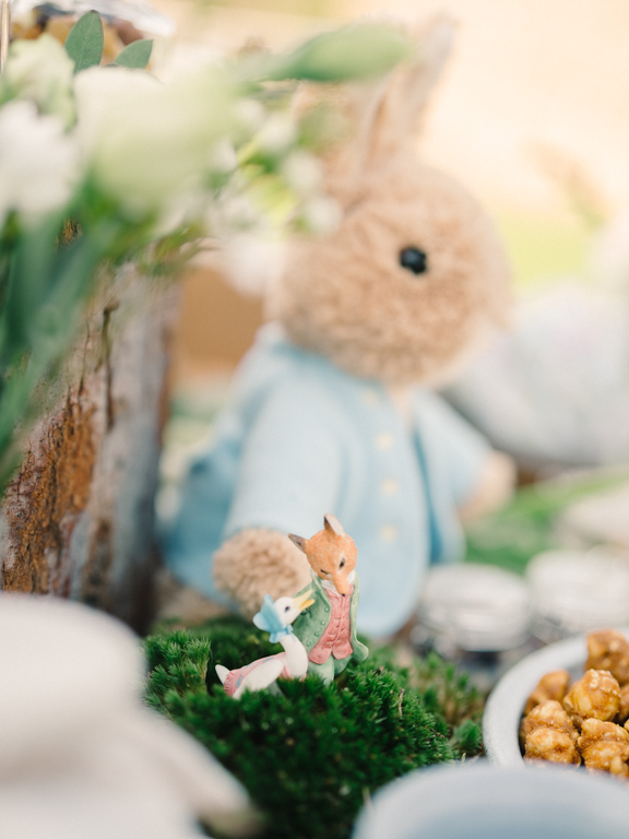 Peter Rabbit Theme Party in the Park - Styling by My Lovely Wedding in Dubai