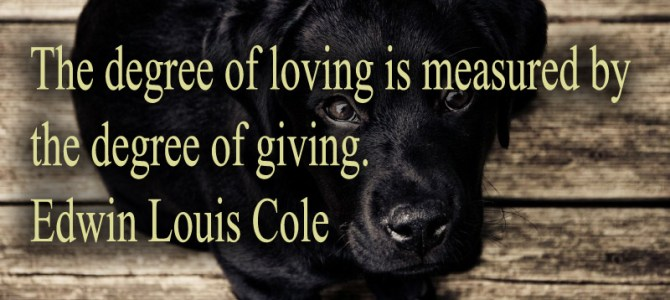 The degree of giving measure the degree of loving