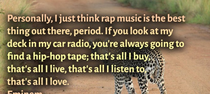 Personally, I just think rap music is the best thing out there