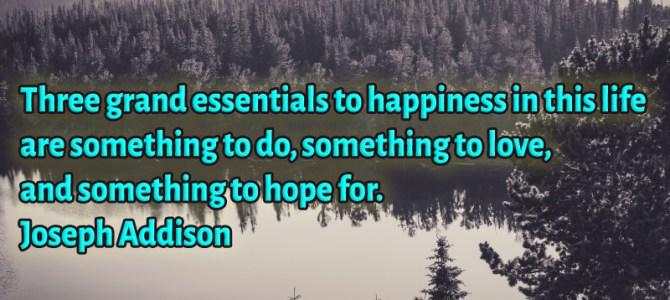 Happiness require to have something to do, to love and to hope for