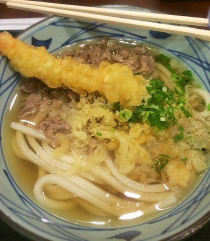 Niku Udon (mince beef) and shrimp tempura