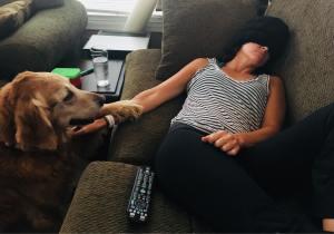 migraine dog