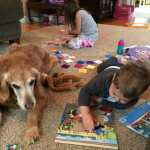 Migraine Therapy Dog: Grieving the Loss of a Pet