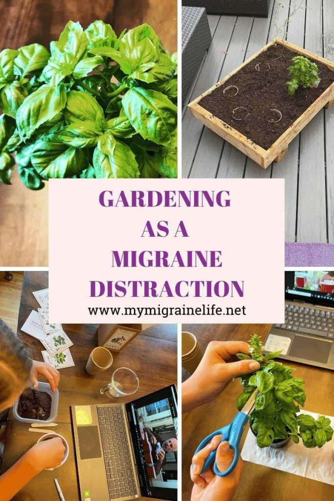How Gardening Became My Migraine Distraction