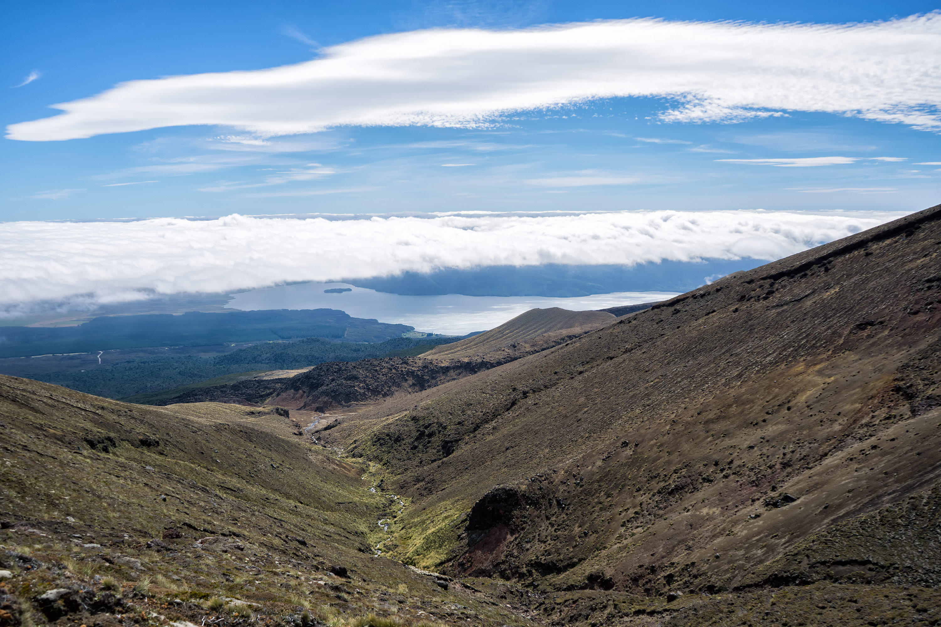 Tongariro Alpine Crossing Lake Rotoaira View