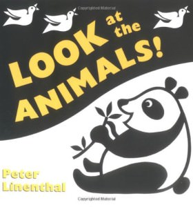 board books animals
