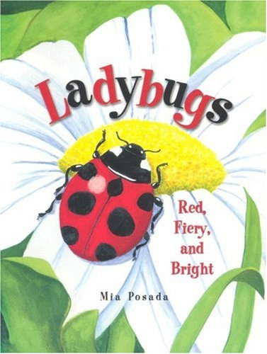 ladybugs red fiery and bright book