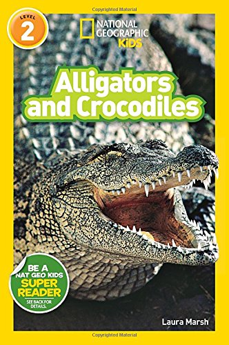 alligator and crocs