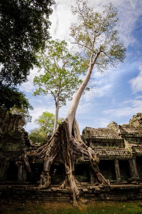Cambogia2015_0045