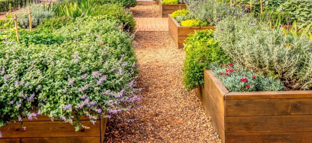 15 Cheap No Grass Backyard Ideas | MYMOVE on Cheap Backyard Ideas No Grass  id=48326