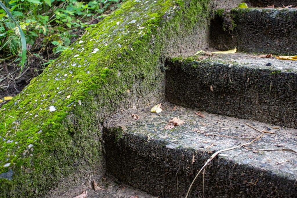 15 Cheap No Grass Backyard Ideas | MYMOVE on Cheap Backyard Ideas No Grass  id=88398