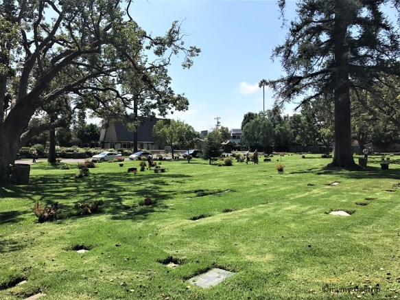 westwood-memorial-village-park