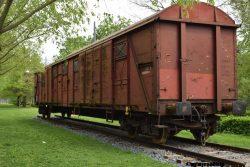 freighttrain-yokoono