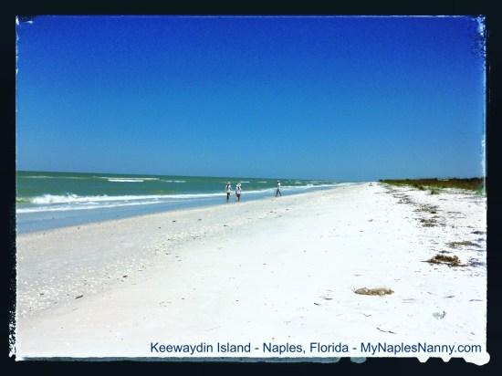 Walking on Beach at Keewaydin Island Near Naples Florida My Naples Nanny