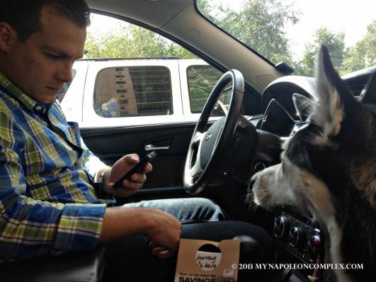 Arya enjoying the car ride and the AC.