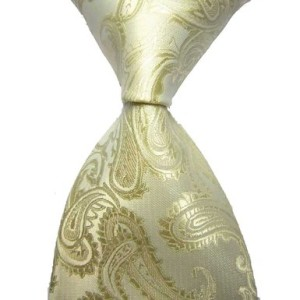 Paisley Jacquard Woven Men's Tie Necktie Scarf Wedding Party Dress 13 Colors