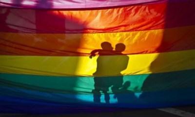 LGBTQI+ homosexuals
