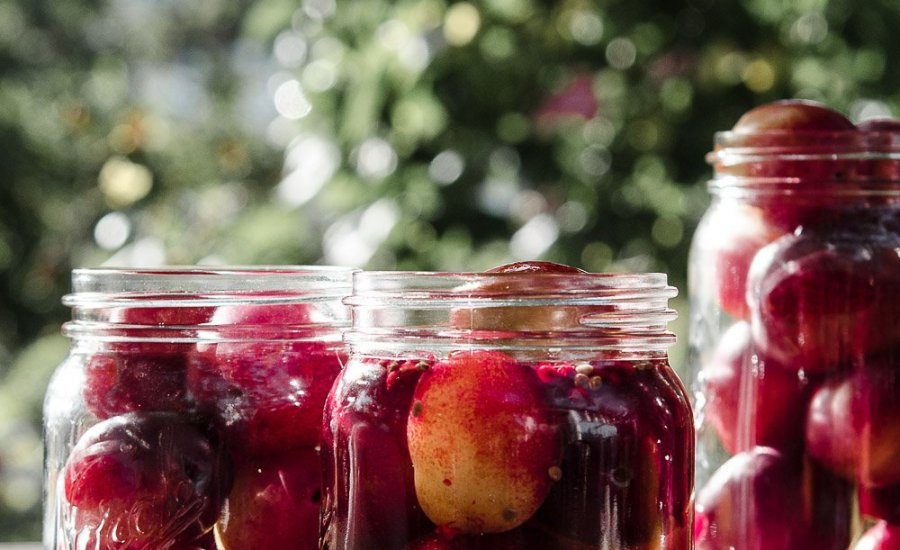 Sweet Canning Plums