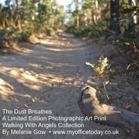 Dust Breathes, 1/14 in the Walking With Angels Collection, by Melanie Gow.