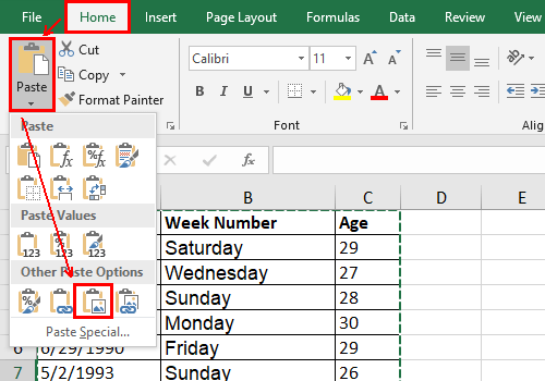 How to Copy and Paste Excel Table as a Picture