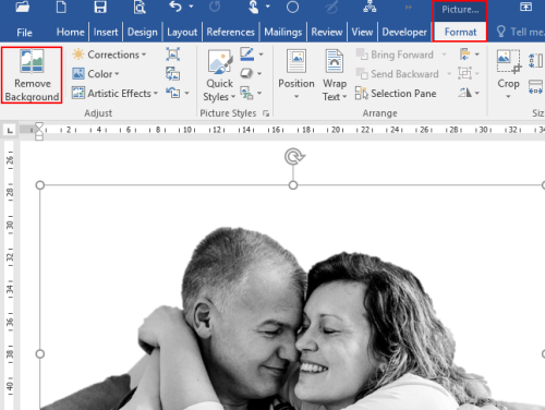 How to Remove the Background of Pictures Quickly in MS Word