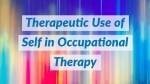 ot-therapeutic-use-self1