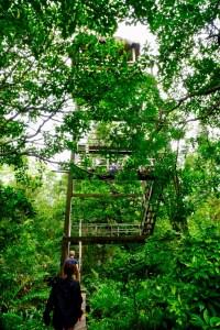 parc national de Ream point d'observation