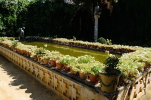 Jardin Casa des Pilatos Séville