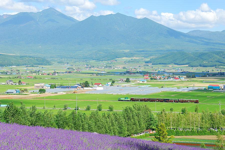 (2017更新版)富良野+美瑛的JR優惠票券及期間限定觀光列車/小火車ノロッコ号運行情報。