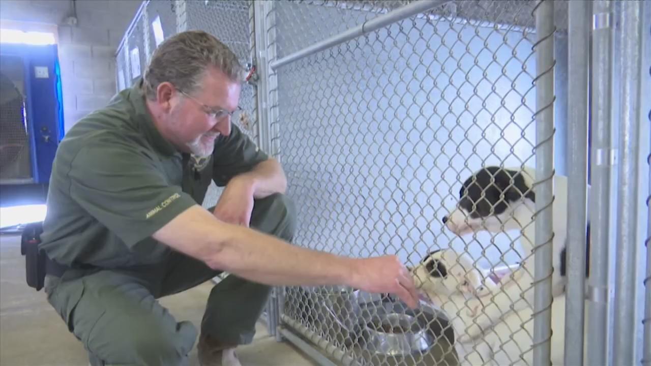 ANIMAL CONTROL OFFICER APPRECIATION WEEK