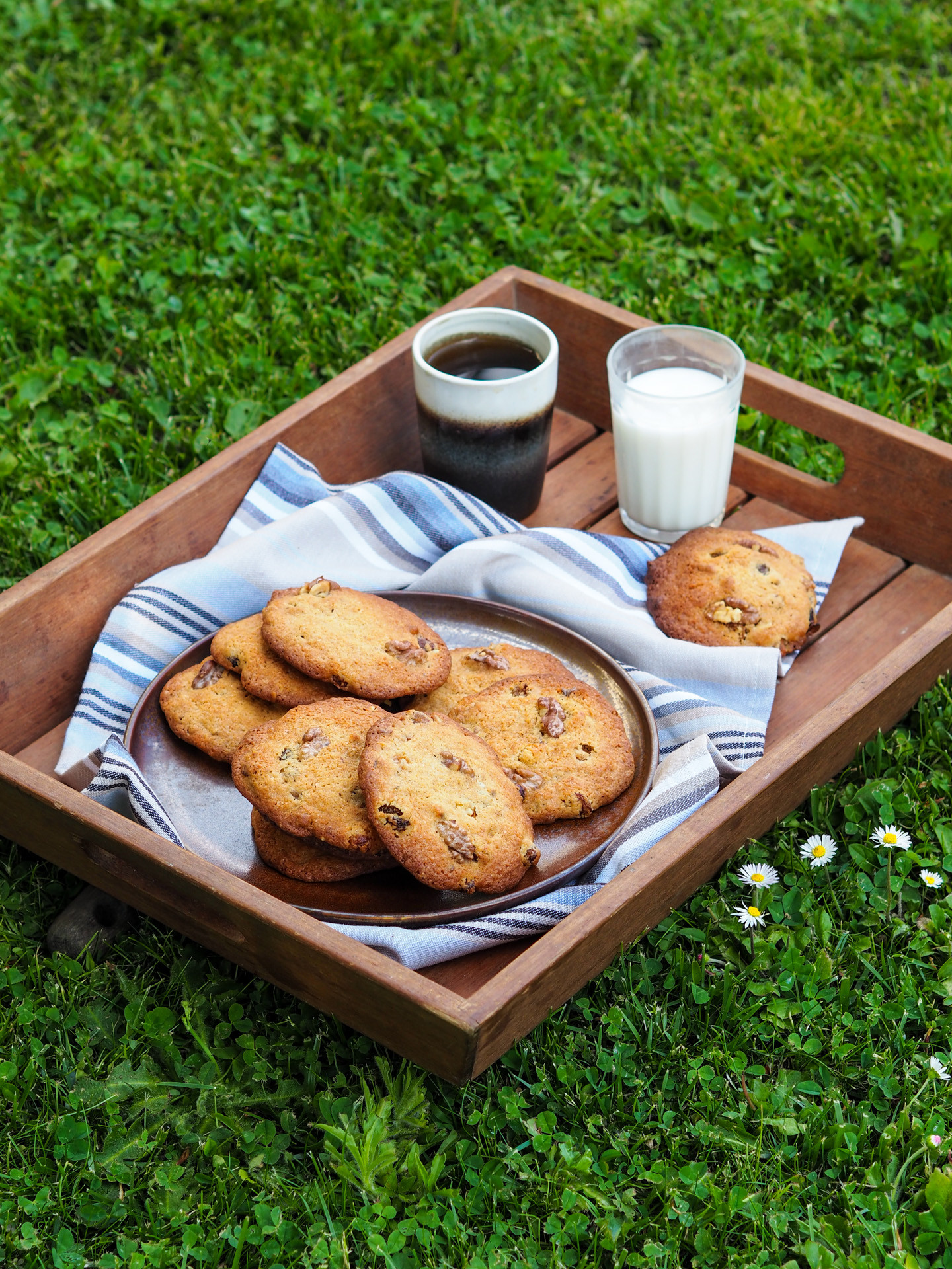 Goûter dans l'herbe avec 的 cookies flocons d'avoine, raisins secs 和 noix