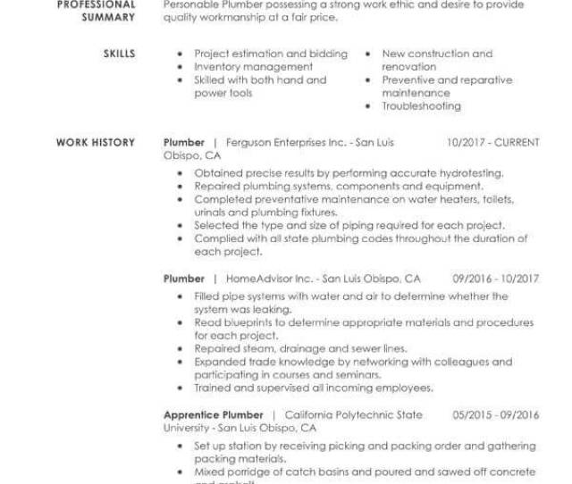 Check Out Our Free Simple Resume Examples Guide For