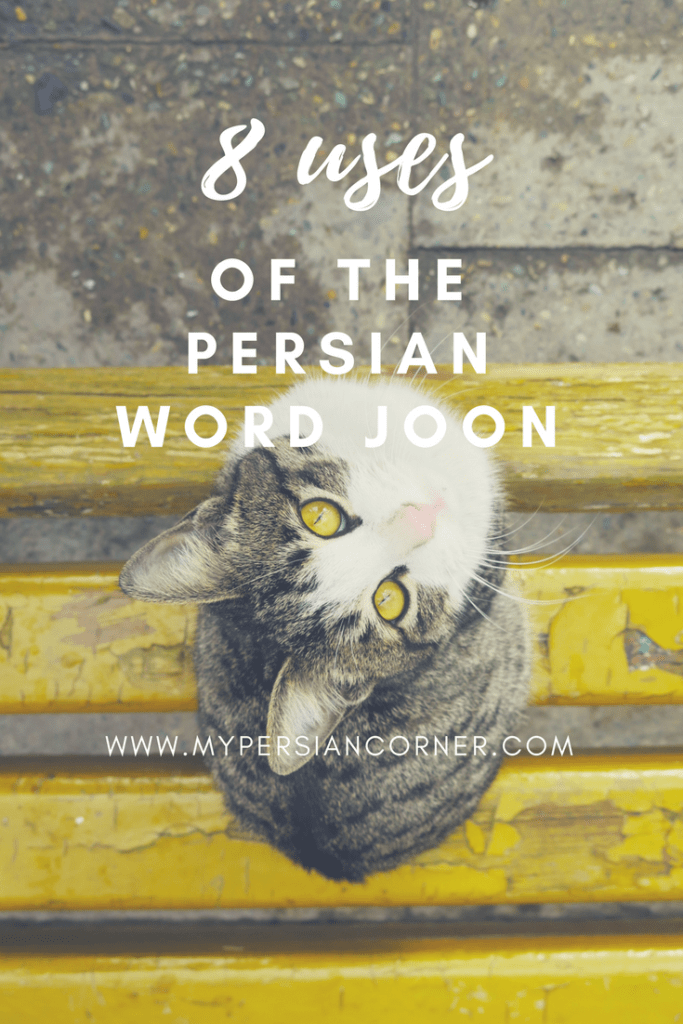 If you have Iranian friends, you're sure to have heard the Persian word joon dozens of times. Find out the various meanings and sound like a native Persian speaker with these eight uses.