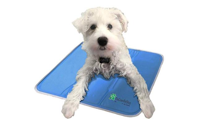 arf pets self cooling dog mat