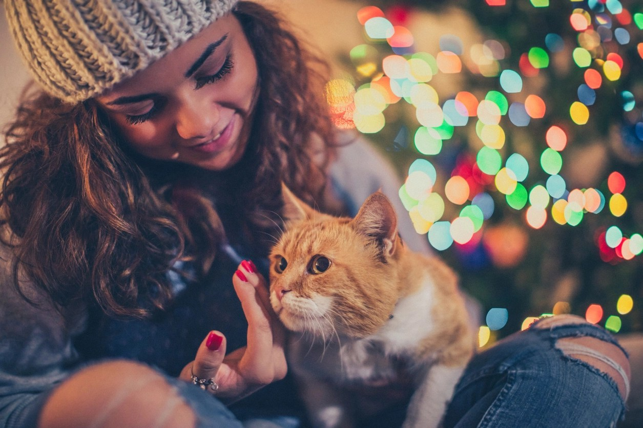 Bonus Holiday Gift Guide for Cat Lovers