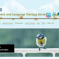 Word Steps Speech and Language Therapy Service