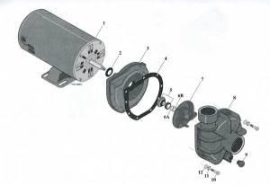 StaRite LT Pump Parts Diagram | Parts List