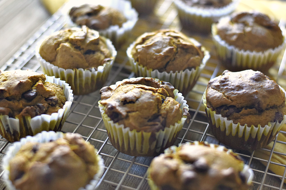 Pumpkin Chocolate Chip Muffins - My Pretty Brown Fit