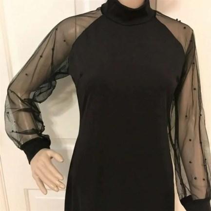 Women Sheer Long Sleeve Dress