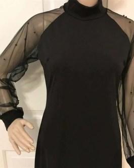 Women Sheer Long Sleeve Dress in 2 Sizes-Fashion