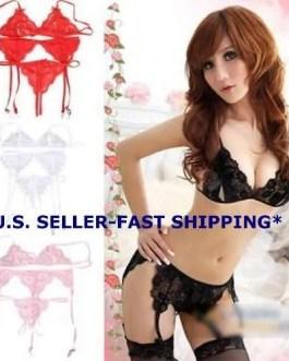 Lace Lingerie 4 Pc Set Bra, Panties, Garter Belt & Fishnet Stockings 4 Color Choices
